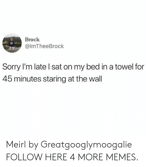 Staring At The Wall: Brock  @lmTheeBrock  Sorry I'm late l sat on my bed in a towel for  45 minutes staring at the wall Meirl by Greatgooglymoogalie FOLLOW HERE 4 MORE MEMES.
