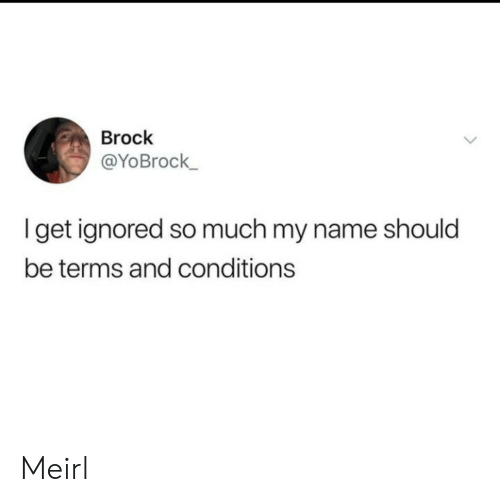 Brock, MeIRL, and Name: Brock  @YoBrock  get ignored so much my name should  be terms and conditions Meirl
