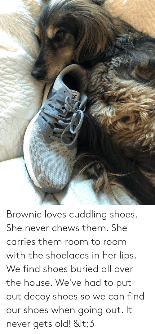 Chews: Brownie loves cuddling shoes. She never chews them. She carries them room to room with the shoelaces in her lips. We find shoes buried all over the house. We've had to put out decoy shoes so we can find our shoes when going out. It never gets old! <3