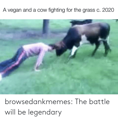 Blog: browsedankmemes:  The battle will be legendary