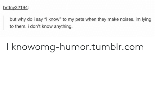 "Omg, Tumblr, and Pets: brttny32194:  but why do i say ""i know"" to my pets when they make noises. im lying  to them. i don't know anything I knowomg-humor.tumblr.com"
