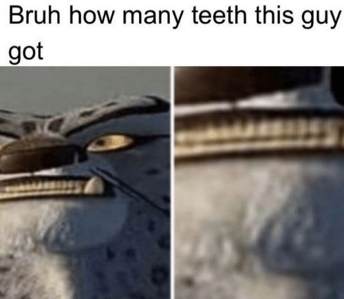 Bruh, How, and Got: Bruh how many teeth this guy  got