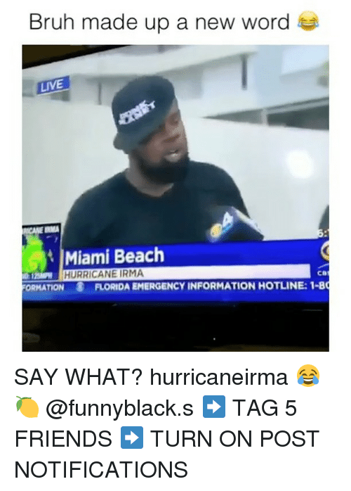 beached: Bruh made up a new word  LIVE  Miami Beach  HURRICANE IRMA  12  ORMATION  FLORIDA EMERGENCY INFORMATION HOTLINE: 1-8 SAY WHAT? hurricaneirma 😂🍋 @funnyblack.s ➡️ TAG 5 FRIENDS ➡️ TURN ON POST NOTIFICATIONS
