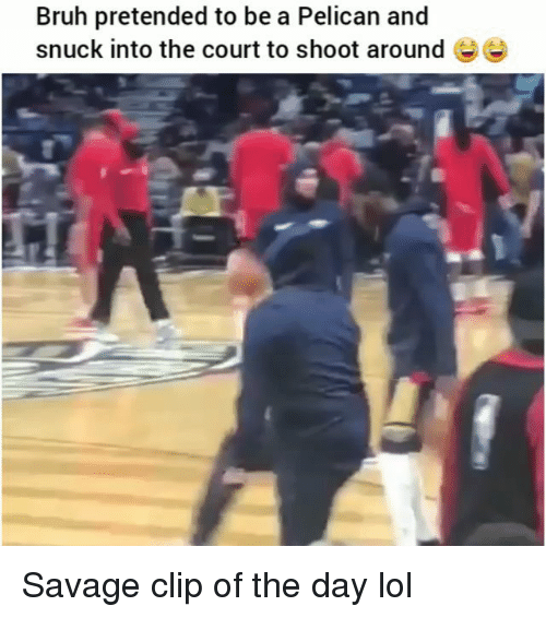 pelican: Bruh pretended to be a Pelican and  snuck into the court to shoot around Ee Savage clip of the day lol