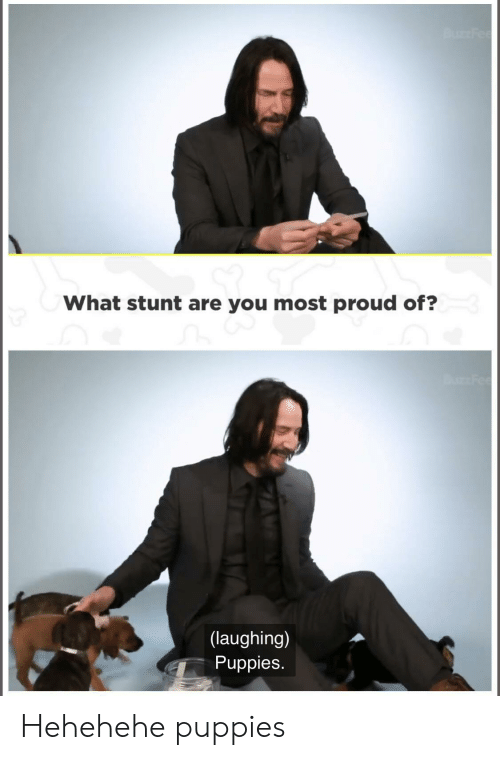 Hehehehe: Bu Fee  What stunt are you most proud of?  Fee  (laughing)  Puppies. Hehehehe puppies