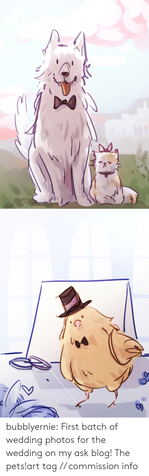 Draws: bubblyernie   bubbyern bubblyernie:  First batch of wedding photos for the wedding on my ask blog! The pets!art tag // commission info