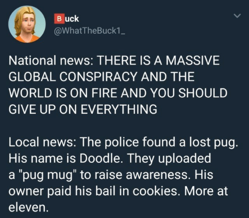 "bail: Buck  @WhatTheBuck1_  National news: THERE IS A MASSIVE  GLOBAL CONSPIRACY AND THE  WORLD IS ON FIRE AND YOU SHOULD  GIVE UP ON EVERYTHING  Local news: The police found a lost pug.  His name is Doodle. They uploaded  a ""pug mug"" to raise awareness. His  owner paid his bail in cookies. More at  eleven."