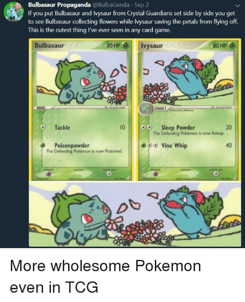 Bulbasaur, Pokemon, and Vine: Bulbasaur Propaganda @BulbaGanda Sep 2  If you put Bulbasaur and Ivysaur from Crystal Guardians set side by side you get  to see Bulbasaur collecting flowers while lvysaur saving the petals from flying off  This is the cutest thing I've ever seen in any card game.  Bulbasaur  50HP  Ivysaur  80 HP  Tackle  10  o  Sleep Powder  20  The Defending Pokémon is now Asleep.  e)  Poisonpowder  The Defending Pokémon is now Poisoned  Vine whip  40 More wholesome Pokemon even in TCG