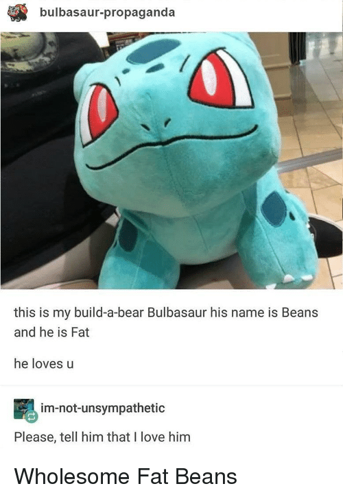 Build a Bear: bulbasaur-propaganda  this is my build-a-bear Bulbasaur his name is Beans  and he is Fat  he loves u  im-not-unsympathetic  Please, tell him that I love him Wholesome Fat Beans