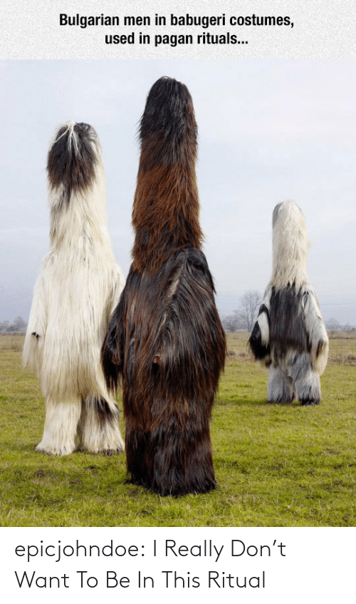 I Really: Bulgarian men in babugeri costumes,  used in pagan rituals... epicjohndoe:  I Really Don't Want To Be In This Ritual
