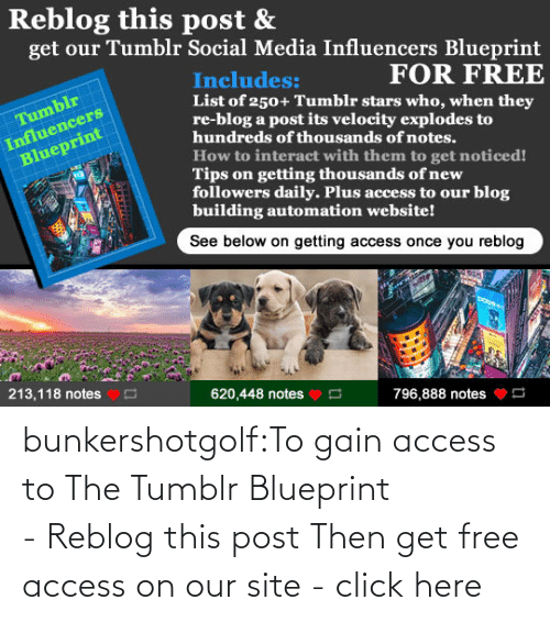 This Post: bunkershotgolf:To gain access to The Tumblr Blueprint - Reblog this post Then get free access on our site - click here