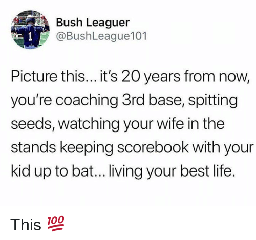 Coaching: Bush Leaguer  @BushLeague101  Picture this... it's 20 years from now,  you're coaching 3rd base, spitting  seeds, watching your wife in the  stands keeping scorebook with your  kid up to bat... living your best life. This 💯