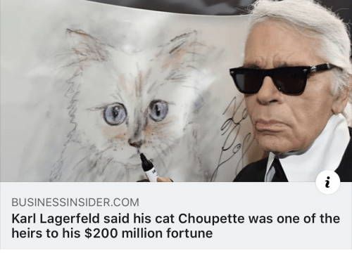 Bailey Jay, Cat, and Com: BUSINESSINSIDER COM  Karl Lagerfeld said his cat Choupette was one of the  heirs to his $200 million fortune