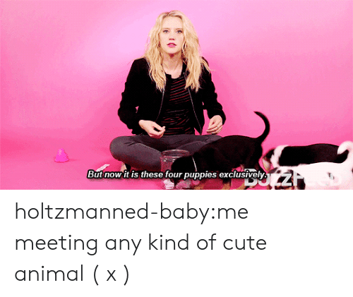 Baby Tumblr: But now it iS these four puppies exclusively holtzmanned-baby:me meeting any kind of cute animal ( x )
