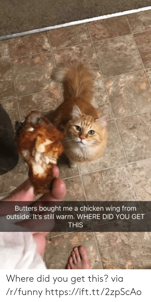butters: Butters bought me a chicken wing from  outside. It's still warm. WHERE DID YOU GET  THIS Where did you get this? via /r/funny https://ift.tt/2zpScAo