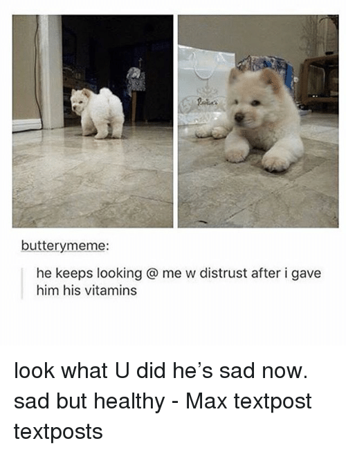 Memes, Sad, and What U: butterymeme:  he keeps looking @ me w distrust after i gave  him his vitamins look what U did he's sad now. sad but healthy - Max textpost textposts