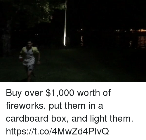 cardboard box: Buy over $1,000 worth of fireworks, put them in a cardboard box, and light them. https://t.co/4MwZd4PIvQ