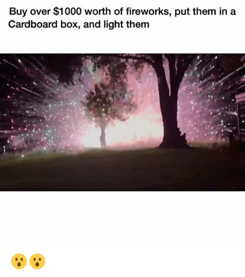 cardboard box: Buy over $1000 worth of fireworks, put them in a  Cardboard box, and light them 😮😮