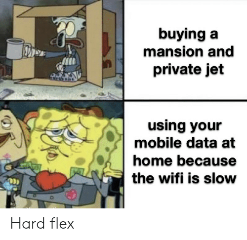 Mansion: buying a  mansion and  private jet  using your  mobile data at  home because  the wifi is slow Hard flex