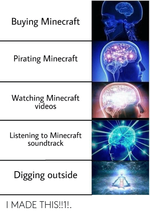 Pirating: Buying Minecraft  Pirating Minecraft  Watching Minecraft  videos  Listening to Minecraft  soundtrack  Digging outside I MADE THIS!!1!.