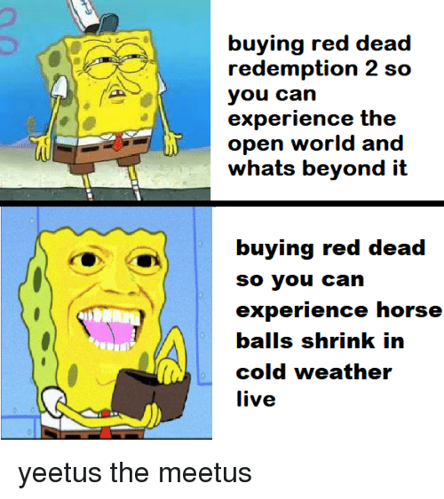 Cold Weather: buying red dead  redemption 2 sco  you can  experience the  open world and  whats beyond it  itt  experience horse  cold weather  live yeetus the meetus