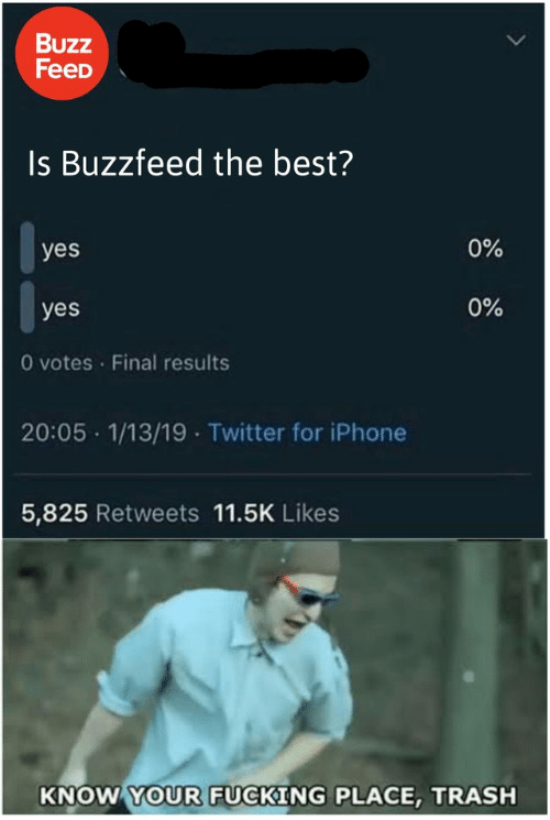 Fucking, Iphone, and Trash: Buzz  FeeD  Is Buzzfeed the best?  0%  yes  0%  yes  O votes Final results  20:05 1/13/19 Twitter for iPhone  5,825 Retweets 11.5K Likes  KNOW YOUR FUCKING PLACE, TRASH