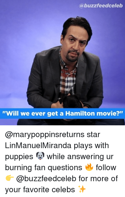 "Puppies, Movie, and Star: @buzzfeedceleb  ""Will we ever get a Hamilton movie?"" @marypoppinsreturns star LinManuelMiranda plays with puppies 🐶 while answering ur burning fan questions 🔥 follow 👉 @buzzfeedceleb for more of your favorite celebs ✨"