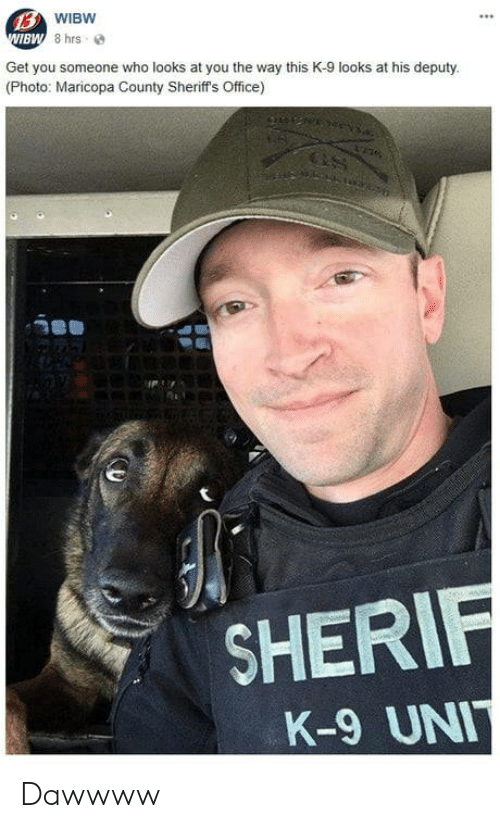 k-9: BW  Get you someone who looks at you the way this K-9 looks at his deputy  (Photo: Maricopa County Sheriff's Office)  SHER  K-9 UN Dawwww