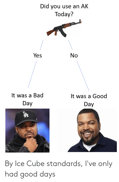 Ice Cube: By Ice Cube standards, I've only had good days