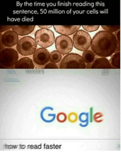 Google, How To, and Time: By the time you finish reading this  sentence, 50 million of your cells will  have died  Google  how to read faster