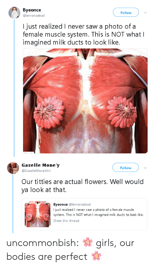 Bodies , Girls, and Money: Byeonce  @lemonadead  Follow  I just realized I never saw a photo of a  female muscle system. This is NOT whatl  imagined milk ducts to look like.   Gazelle Mone'y  @GazelleMonetArt  Follow  Our titties are actual flowers. Well would  ya look at that.  Byeonce @lemonadead  I just realized I never saw a photo of a female muscle  system. This is NOT what I imagined milk ducts to look like.  Show this thread uncommonbish: 🌸    girls, our bodies are perfect 🌸