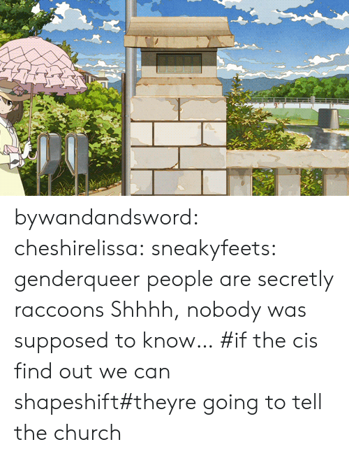 Shhhh: bywandandsword: cheshirelissa:  sneakyfeets:  genderqueer people are secretly raccoons  Shhhh, nobody was supposed to know…    #if the cis find out we can shapeshift#theyre going to tell the church