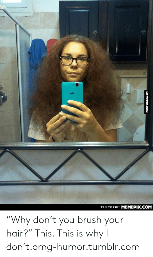 "Why Don: CНECK OUT MЕМЕРIХ.COM  МЕМЕРХ.Сом ""Why don't you brush your hair?"" This. This is why I don't.omg-humor.tumblr.com"
