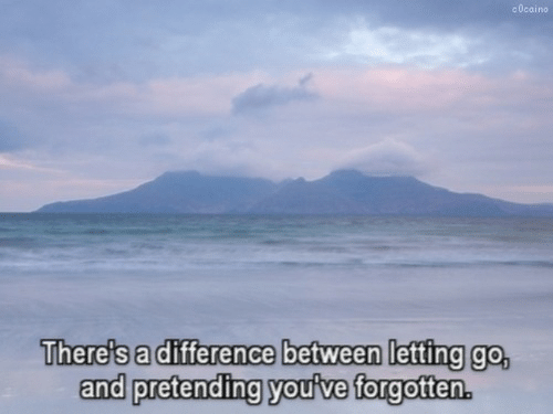 Letting Go: c 0cai no  There's a difference between letting go,  and pretending youive forgottern