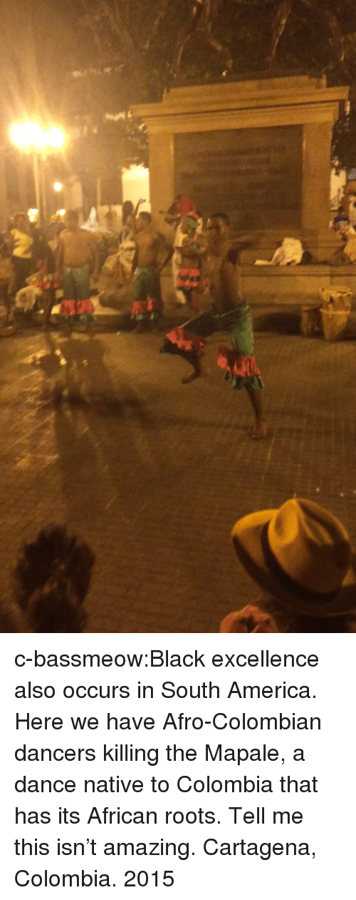 America, Tumblr, and Black: c-bassmeow:Black excellence also occurs in South America. Here we have Afro-Colombian dancers killing the Mapale, a dance native to Colombia that has its African roots. Tell me this isn't amazing. Cartagena, Colombia.    2015
