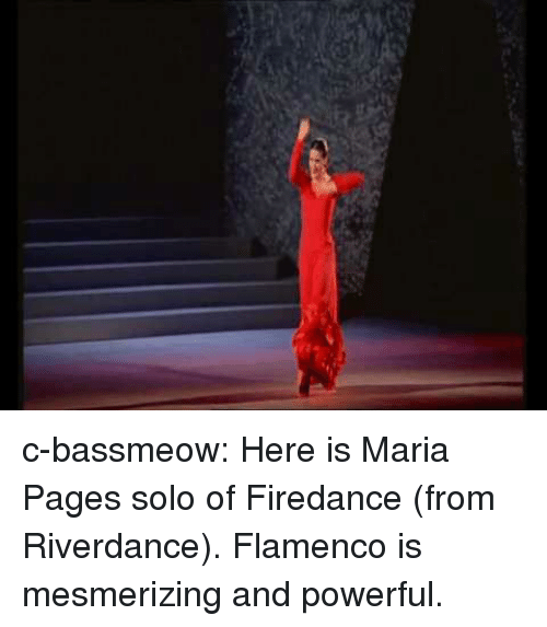 Tumblr, Blog, and Http: c-bassmeow:  Here is Maria Pages solo of Firedance (from Riverdance). Flamenco is mesmerizing and powerful.