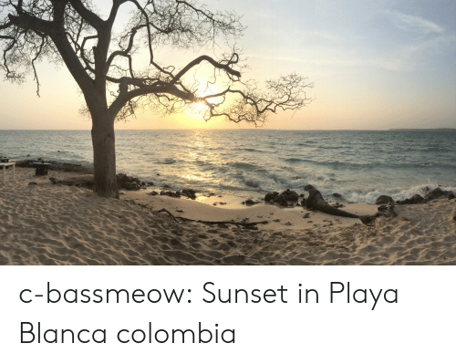 playa: c-bassmeow:  Sunset in Playa Blanca colombia