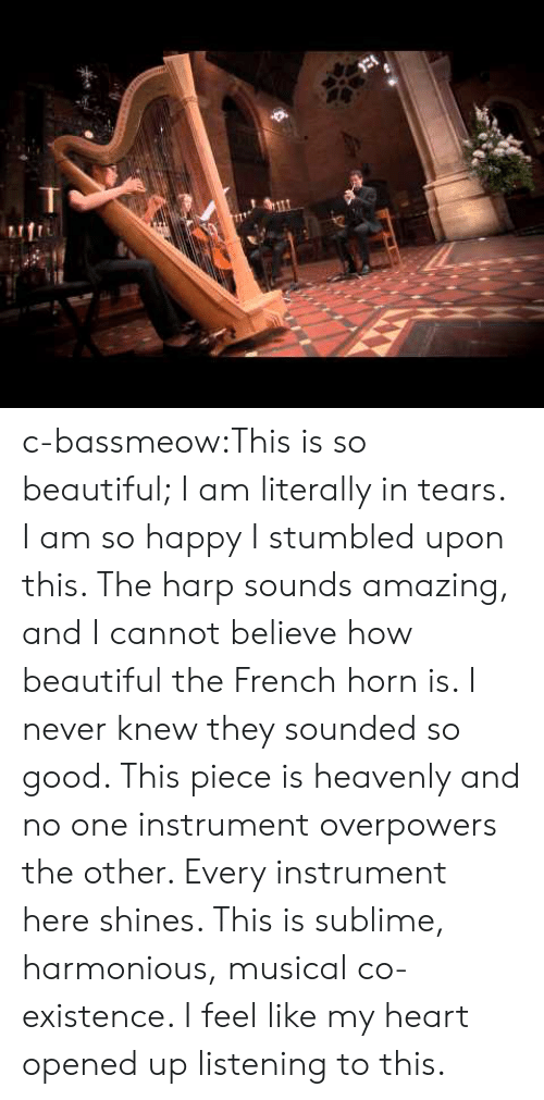 Beautiful, Tumblr, and Sublime: c-bassmeow:This is so beautiful; I am literally in tears. I am so happy I stumbled upon this. The harp sounds amazing, and I cannot believe how beautiful the French horn is. I never knew they sounded so good. This piece is heavenly and no one instrument overpowers the other. Every instrument here shines. This is sublime, harmonious, musical co-existence. I feel like my heart opened up listening to this.