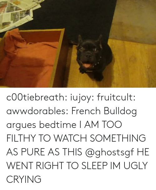 bedtime: c00tiebreath: iujoy:   fruitcult:  awwdorables:  French Bulldog argues bedtime  I AM TOO FILTHY TO WATCH SOMETHING AS PURE AS THIS   @ghostsgf   HE WENT RIGHT TO SLEEP IM UGLY CRYING