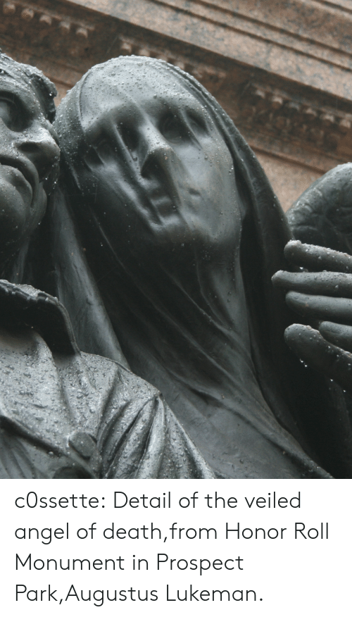 Tumblr, Angel, and Blog: c0ssette:  Detail of the veiled angel of death,from Honor Roll Monument in Prospect Park,Augustus Lukeman.