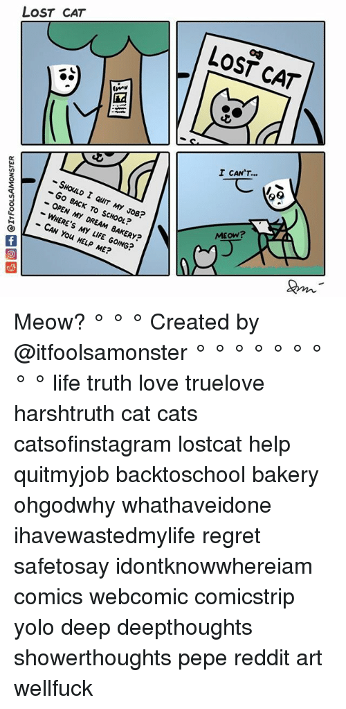 Lost Cat: CA  LOST CAT  LOST CAT  I CAN'T...  0  -SHOULD I QUIT MY JOB?  - Go BACK TO SCHOOL?  - OPEN MY DREAM BAKERY?  -WHERE'S MY LIFE GOING?  MEOW?  CAN You HELP ME? Meow? ° ° ° Created by @itfoolsamonster ° ° ° ° ° ° ° ° ° life truth love truelove harshtruth cat cats catsofinstagram lostcat help quitmyjob backtoschool bakery ohgodwhy whathaveidone ihavewastedmylife regret safetosay idontknowwhereiam comics webcomic comicstrip yolo deep deepthoughts showerthoughts pepe reddit art wellfuck