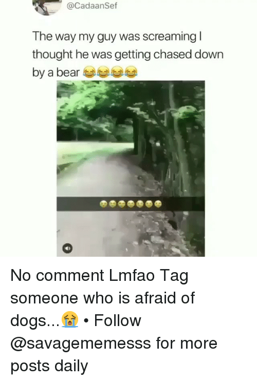 no comment: @CadaanSef  The way my guy was screaming l  thought he was getting chased down  by a bear No comment Lmfao Tag someone who is afraid of dogs...😭 • Follow @savagememesss for more posts daily