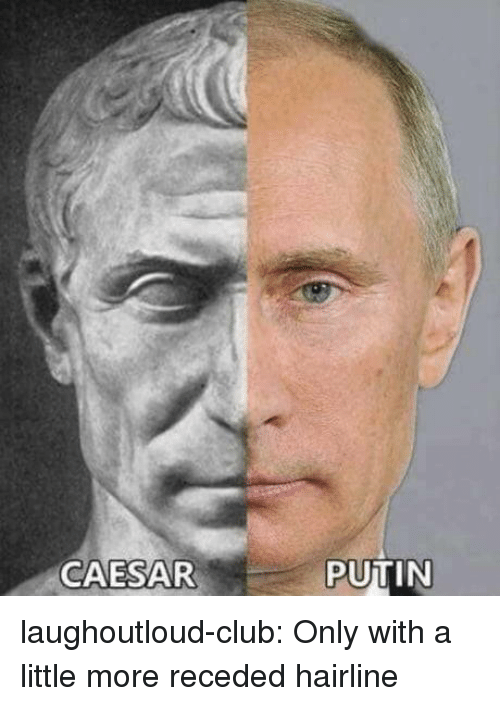 Hairline: CAESAR  PUTIN laughoutloud-club:  Only with a little more receded hairline