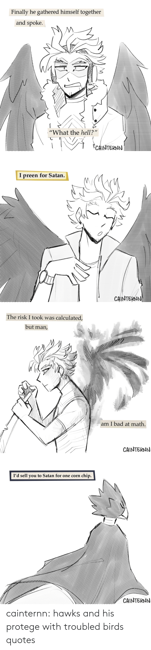 Hawks: cainternn:  hawks and his protege with troubled birds quotes