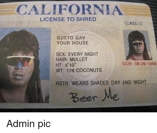 "Gav: CALIFORNIA  LICENSE TO SHRED  CLASS:C  GUSTO GAV  YOUR HOUSE  SEX: EVERY NIGHT  HAIR: MULLET  HT: 510""  WT; 178 COCONUTS  DOB: 08-29-1969  RSTR: WEARS SHADES DAY AND NIGHT  Beere Admin pic"