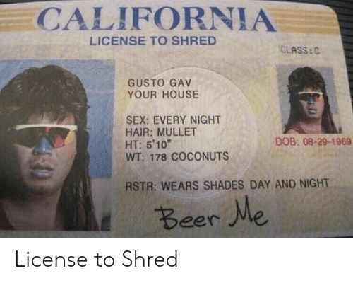 Gav: CALIFORNIA  LICENSE TO SHRED  CLASS:C  GUSTO GAV  YOUR HOUSE  SEX: EVERY NIGHT  HAIR: MULLET  HT: 5'10  WT: 178 COCONUTS  DOB: 08-29-1969  RSTR: WEARS SHADES DAY AND NIGHT  Beer Me License to Shred
