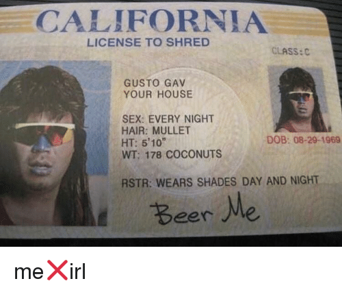 Gav: CALIFORNIA  LICENSE TO SHRED  CLASS:  GUSTO GAV  YOUR HOUSE  SEX: EVERY NIGHT  HAIR: MULLET  HT: 5'10  WT; 178 COCONUTS  DOB: 08-29-1969  RSTR: WEARS SHADES DAY AND NIGHT  Beer Me me❌irl