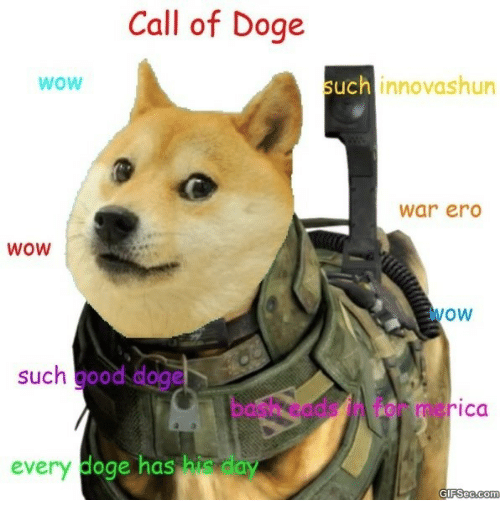 Doge Wow: Call of Doge  WoW  such innovashun  war erd  WOW  wow  such good doge  bash eads in for merica  every  doge has his day
