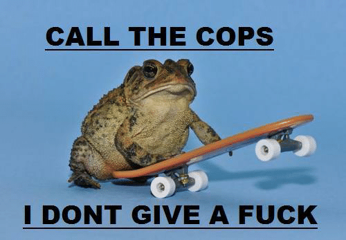 Fuck, Cops, and Call: CALL THE COPS  DONT GIVE A FUCK
