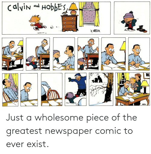 newspaper: calvin and HobbES,A  PNP  y WATERSN Just a wholesome piece of the greatest newspaper comic to ever exist.
